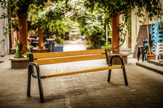 Laxmi bench